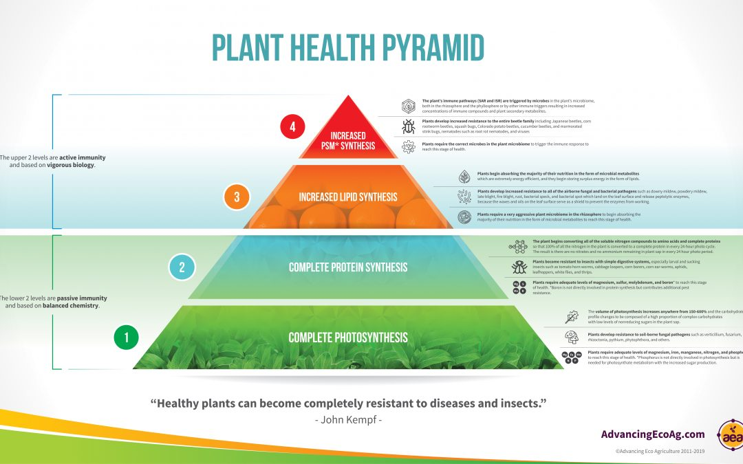 The Pyramid of Plant Health
